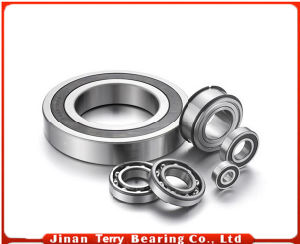 High Quality Deep Groove Ball Bearing (6224)