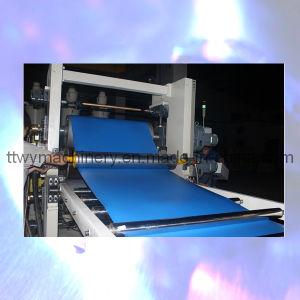 Sjsz-90X30 Single Screw PVC Double Layer Sheet Production Line pictures & photos
