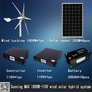 Hybrid Solar Wind Power (MAX 1000W)