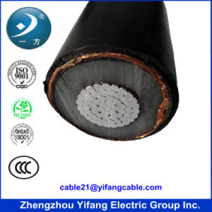 PVC/XLPE Insulation Power Cable pictures & photos