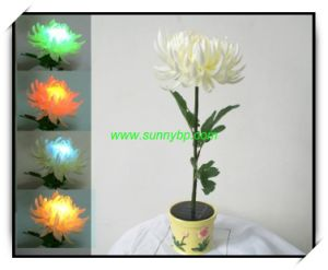 Color Change Flower Garden Light with Solar Power pictures & photos
