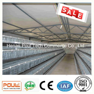 Battery Layer Chicken Cage Equipment pictures & photos