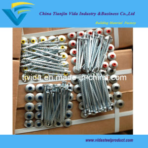 Spiral Screw Nails with Rubber Washer pictures & photos