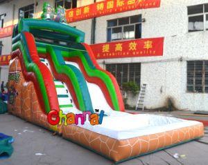 Inflatable Ninja Water Slide Pool Slide pictures & photos