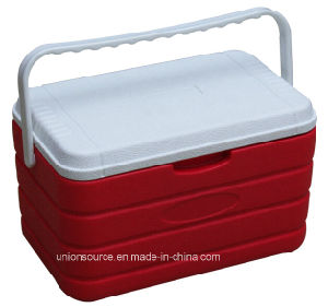 Cooler Box Capacity: 10L HDPE+PU +PP (CCC00007) pictures & photos