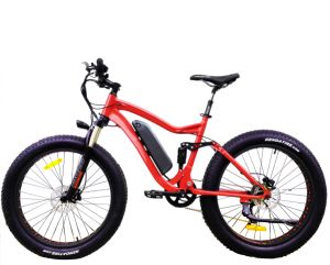 Hot Sale Mountain Electric Bike with Fat Tire pictures & photos