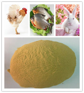 Protein Feed Yeast Animal Feed pictures & photos