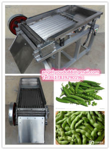 Bean Sheller / Bean Peeler / Bean Shelling Machine / Husking Machine