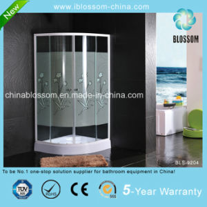 Hangzhou Curved Glass Printed Glass Simple Shower Room Cabin (BLS-9204) pictures & photos
