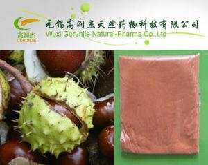 High Quality Herb Medicine Horse Chestnut P. E Aescin Escin on Sell pictures & photos