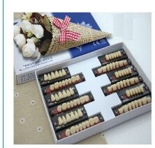 Three-Layer Synthetic Teeth for Dental Use pictures & photos
