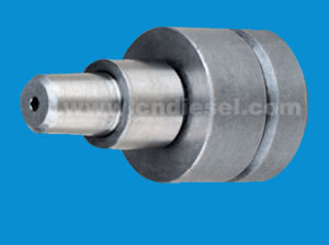 Delivery Valve (2 418 529 988 AD2) pictures & photos
