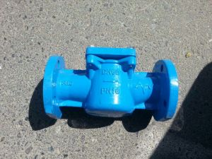 Basket Type Water Meter Strainer pictures & photos