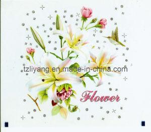 Glitter Plastic Foil pictures & photos