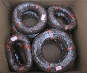 Viton Cord, Viton Stripe, Viton Profile, Viton Seal with Black, Brown etc. pictures & photos