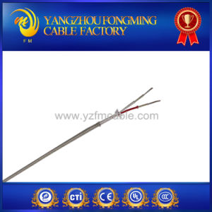 2 Cores High Quality Jx Type Thermocouple Cable Wire pictures & photos