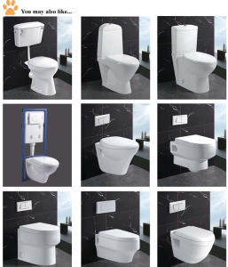 Super White Clean Two Piece Toilet Bathroom Creamic Sanitary Ware pictures & photos