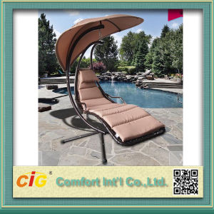 Encase Rattan Outdoor Patio Swing Chair pictures & photos