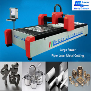 Specialized Laser Metal Cutting Machine-Holy Laser pictures & photos