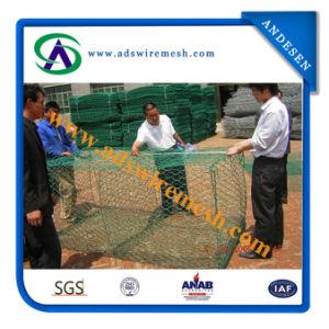 2X1X1m PVC Gabion Box / PVC Stone Cages pictures & photos