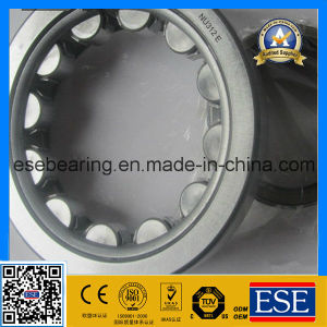 Bearing for Sale Cylindrical Roller Bearing Nu312