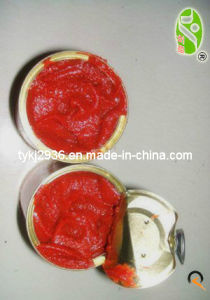 Tomato Paste in Can Birx 28-30% 850g