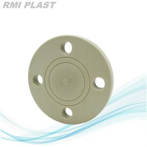 PP Blind Flange by DIN Pn10 pictures & photos