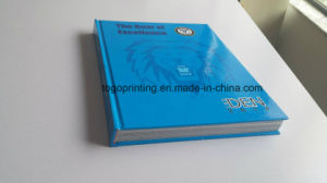Catalog Brochure Printing Magazine Printing Services Offset Printing pictures & photos