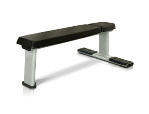 Flat Bench Gym Equipment/Strength Training Equipment (V8-202) pictures & photos