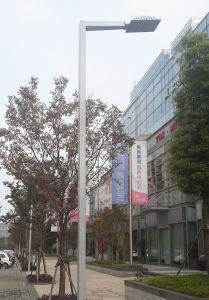 Lighting Pole, Single Arm Pole Garden Pole pictures & photos