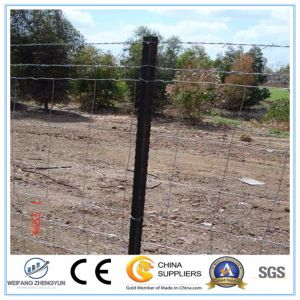 Fence Posts/Star Pickets/Y Type Star Fence Post pictures & photos