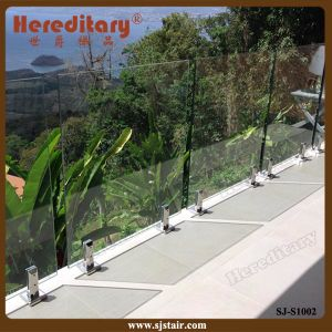 Frameless Glass Railing System / Safety Railing for Balcony (SJ-S1002) pictures & photos