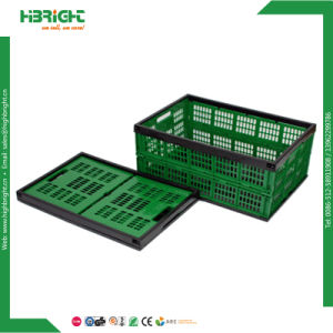Foldable Plastic Material Collapsible Vegetable Storage Crates for Transport pictures & photos