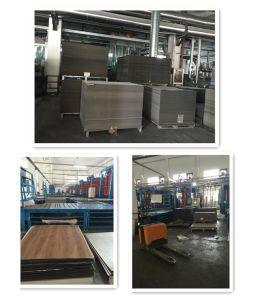 America Popular Wood Design Vinyl Flooring pictures & photos