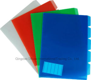 Board Colorful PP Plastic Office File pictures & photos