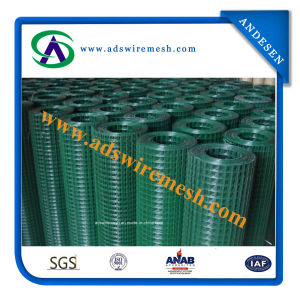 Galvanzied Welded Wire Mesh pictures & photos
