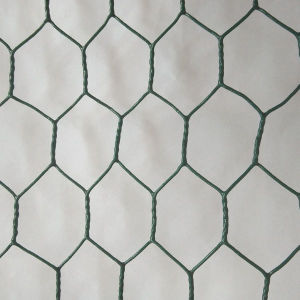 Hot-Dipped Galvanized Hexagonal Wire Mesh pictures & photos