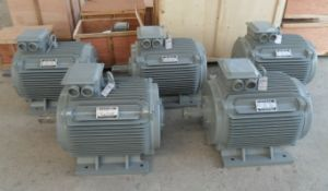 Wind Turbine Permanent Magnet Alternator Motor pictures & photos