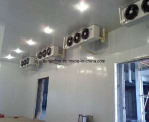 Cold Room for Vegetable / Ice / Fish / Meat Cold Storage pictures & photos