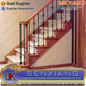 Interior Stair Railing Fencing Hot Sale pictures & photos