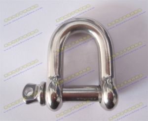 Stainless Steel AISI 304 or AISI316 EU Typ Dee Shackle pictures & photos