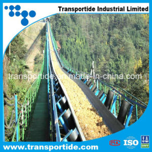 Widely Used Multi-Piled Conveyor Belt pictures & photos