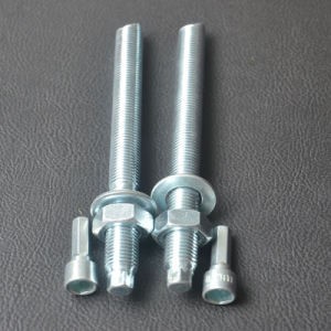 Chemical Anchor Bolt External Hex Head with Setting Tools pictures & photos