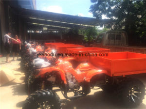 Assured New EEC 250cc Far ATV for Sale pictures & photos