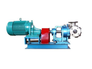 Nyp3.6 High Viscosity Gear Pump for Molasses pictures & photos