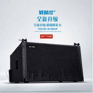 Outdoor Vera12+ Upgraded 12inch Passive Line Array Speaker System pictures & photos