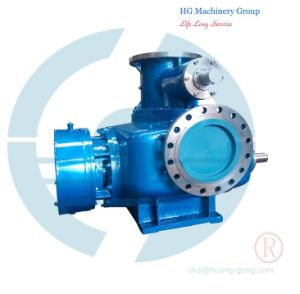 Double Suction Twin Screw Pumps for Oil pictures & photos