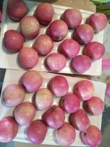 Golden Supplier for Chinese Fresh Red FUJI Apple/Qinguan Apple pictures & photos