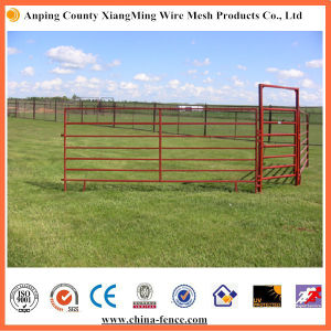 High Quality Farm Fence / Livestock Fence Panels for Sale pictures & photos