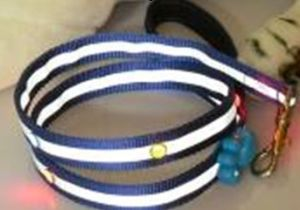 Reflective Pet Collar , LED Flashing Pet Lead/Leash, Pet Strap (1002) pictures & photos